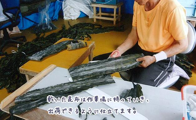 乾いた昆布は作業場に持っていき、出荷できるように仕立てます。